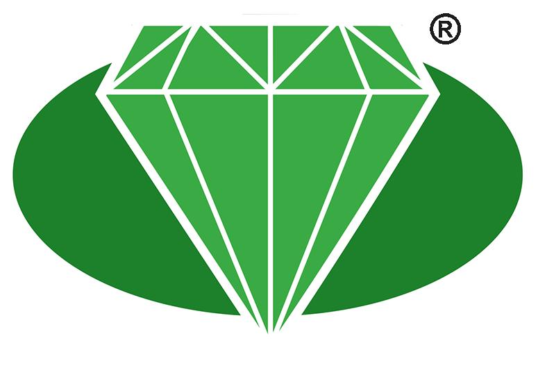 Diamondbrite Paintwork Protection